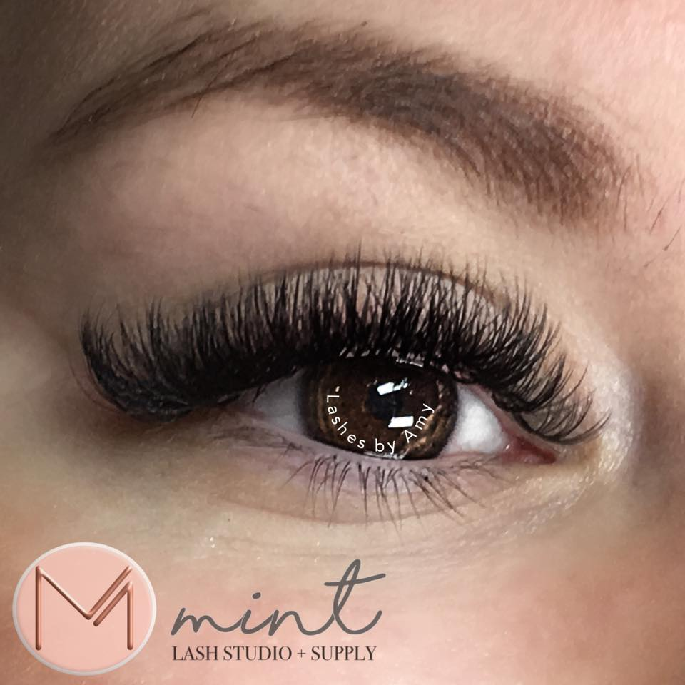Russian Volume Lashes Online Course | Lash Tribe