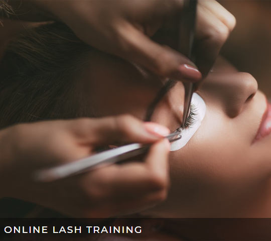 online_lash_training